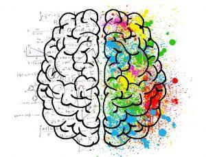 התפתחות תודעתית