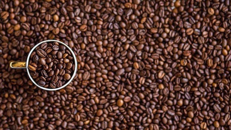 חנות פולי קפה: כך תזמינו קפה באינטרנט