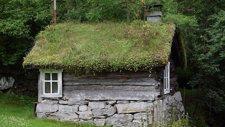 איך לבחור מחסן גינה מעוצב לבית שלכם