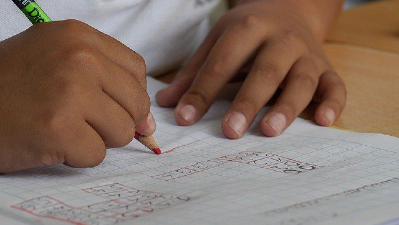 קבלת תלמידים בעלי פיגור שכלי במערכת החינוך הנורמטיבית  –  שילוב או הכלה? עדיאל זיוון, פסיכולוג ומחנך