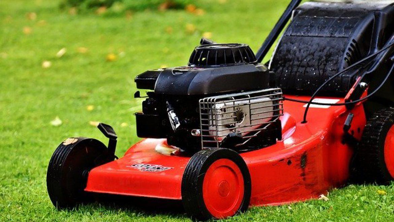 איך לבחור מכסחת דשא לבית